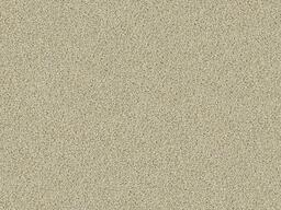 Looking for Interface carpet tiles? Sherbet Fizz in the color Cream is an excellent choice. View this and other carpet tiles in our webshop.
