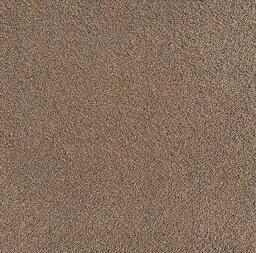 Looking for Interface carpet tiles? Special Custom Made in the color Lizard - Beige is an excellent choice. View this and other carpet tiles in our webshop.