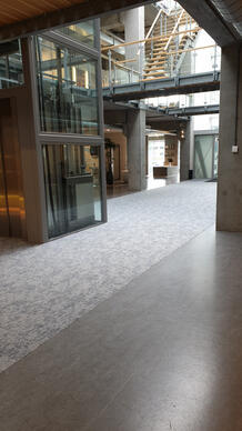 A great combination! Create a luxurious entrance to your company through carpet tiles.